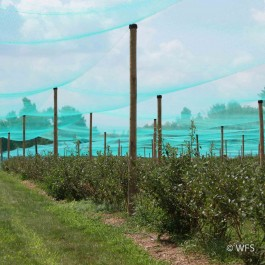 Smart Net Bird Netting, 40' x 531'