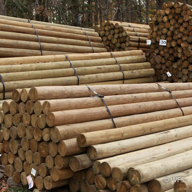 "Premium Lodge Pole Pine, PT 4-5"" x 13'"