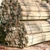 """Southern Yellow Pine, PT 4-5"""" x 7'"""