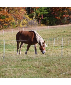 Horse QuikFence™ 4/48/24 x 100'