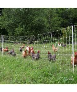 PoultryNet™ 12/48/3 x 164'