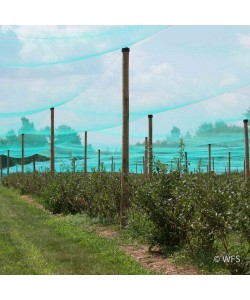 Smart Net Bird Netting, 26' x 531'