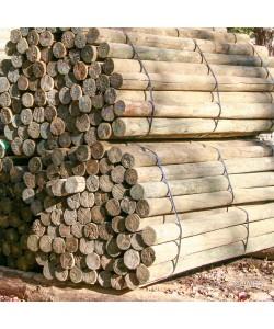 """Southern Yellow Pine, PT 6-7"""" x 8'"""