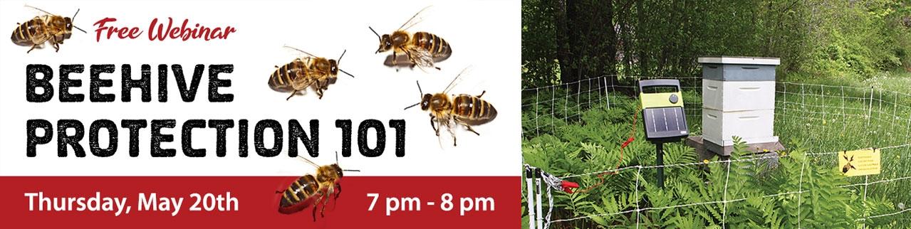 Beehive Protection 101 Webinar