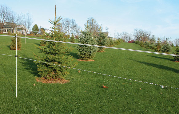 Christmas Tree Fencing Solutions from Wellscroft