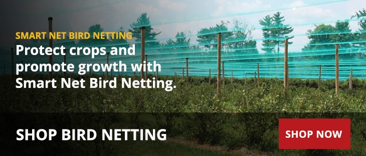 Anti-Bird Netting